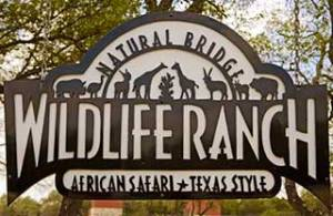 Lockhart-Inn-Natural-Bridge-Wildlife-Ranch